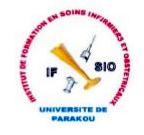Logo IFSIO